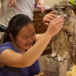 Suzi looks at a mount of a Great Horned Owl