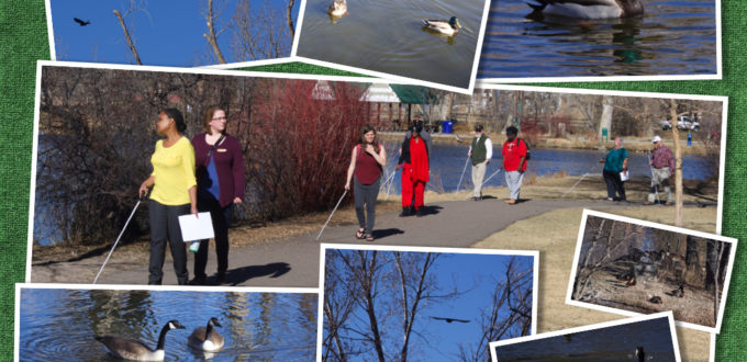 a group walking on a paved path around the pond, using white canes. Photos of various birds border the central shot.