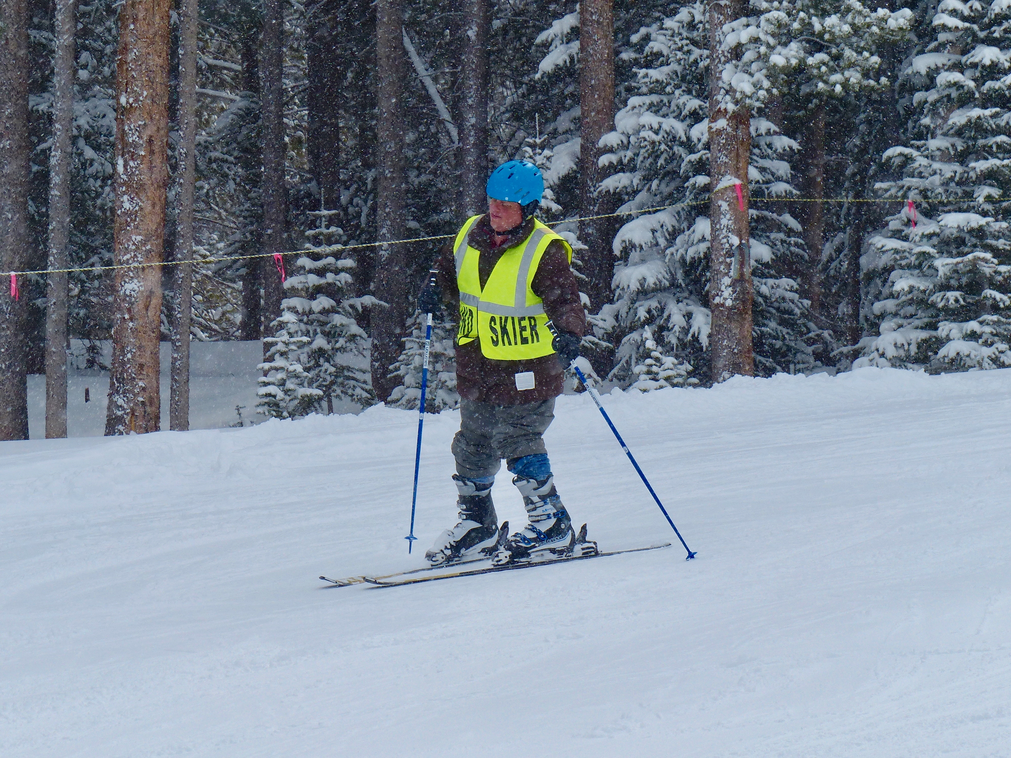 David D. Skiing down the slopes through falling snow