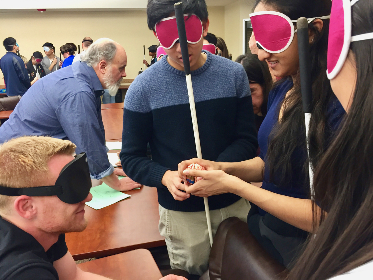 Students in sleepshades examine the mode of a brain on the table between them