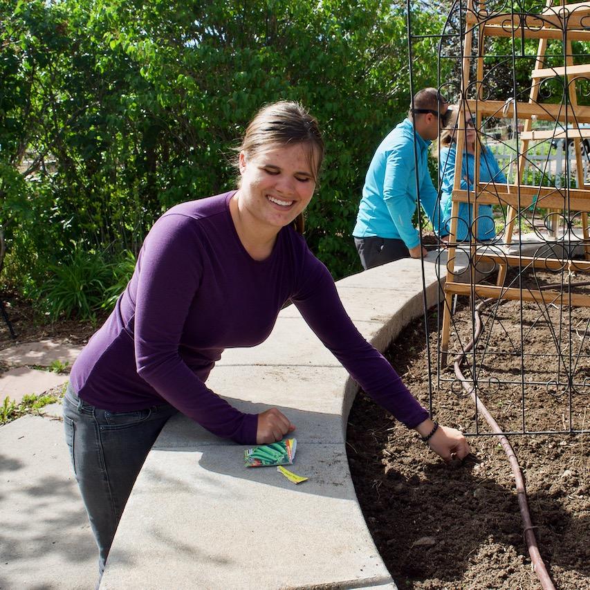 Kyra planting peas under a metal trellis