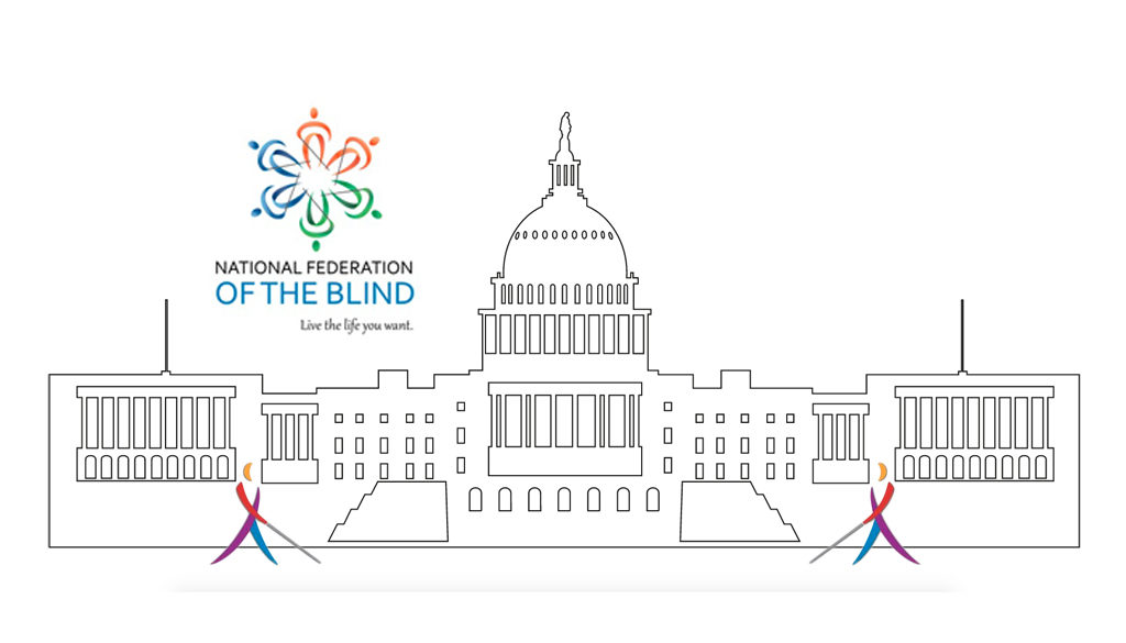 Scholarship Available for blind High School Students: Attend the NFB Washington Seminar Jan. 27-30