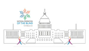 Drawing of the US Capitol with the NFB Logo and Whosits in front of the steps