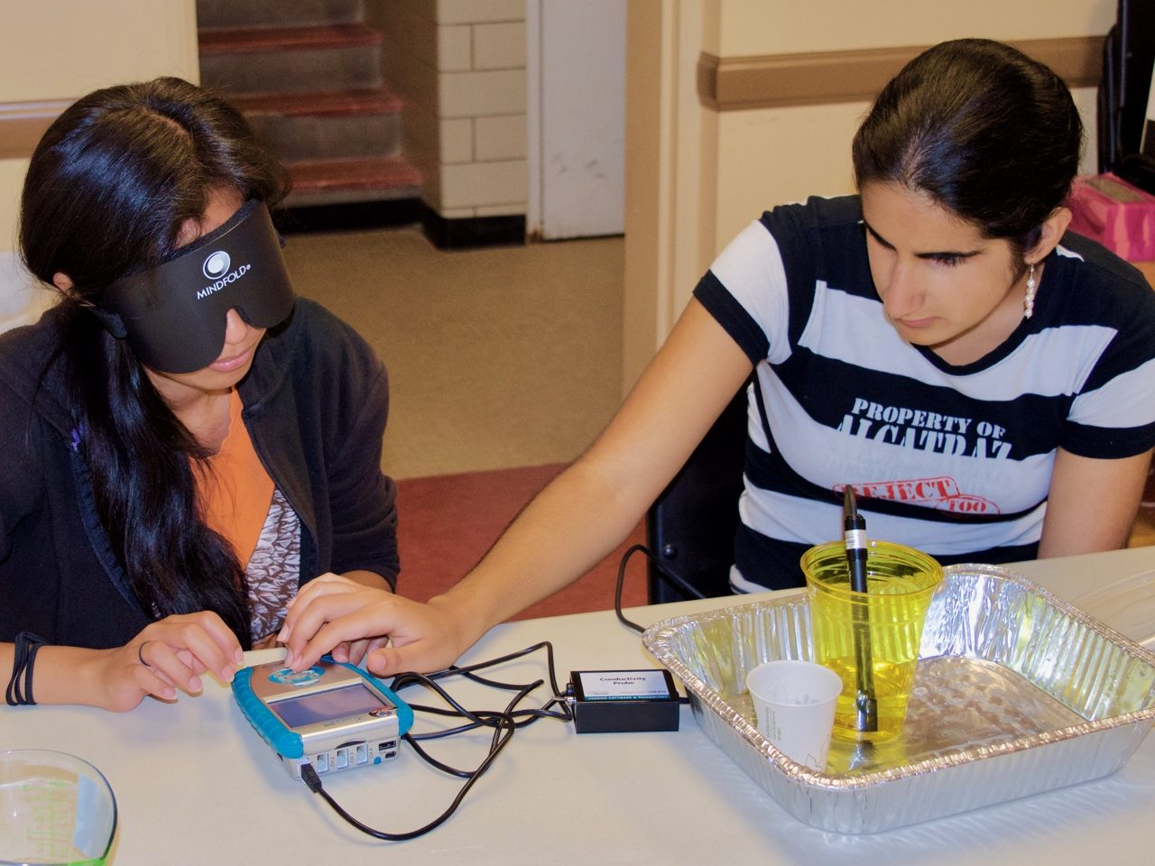 Summer Students work with the LabQuest