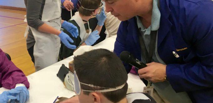 Terry Harrison showing a student various organs inside a shark