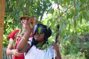 Octavia picks Peaches from the CCB Garden